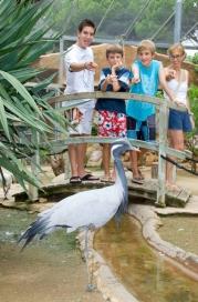 Аквапарк Marineland